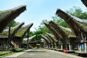 AirAsia Cheap Flight To Makassar - Tana Toraja