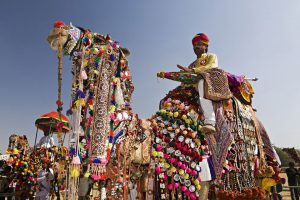 CHEAP FLIGHTS TO INDIA 2017 - Pushkar Camel Fair