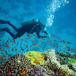AIRASIA FLIGHT TO GOA - Scuba diving in Goa