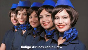 cheap flights from new delhi india june 2018 - indigo airlines