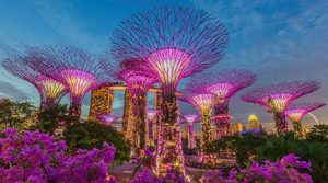cheap flights from singapore june 2018-singapore airlines official