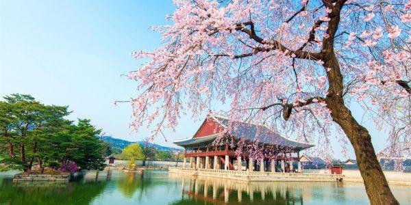 All Flight Schedule From Kuala Lumpur International (KUL) To Seoul Incheon (ICN)